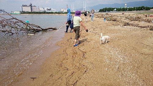 2014・08・13台風後1