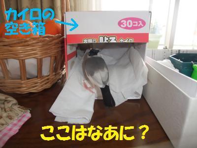 DSCF6244+-+繧ウ繝斐・_convert_20140321195004