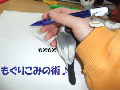 DSCF6611_convert_20140309115443_20140309125608983.jpg