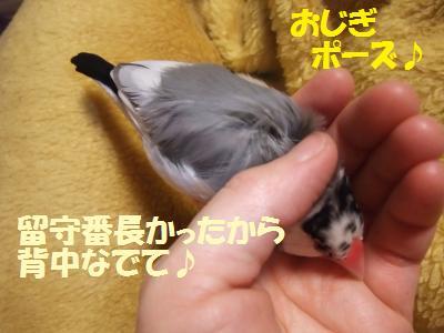 DSCF6681_convert_20140301230936.jpg