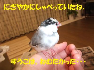 DSCF6888_convert_20140323203938.jpg
