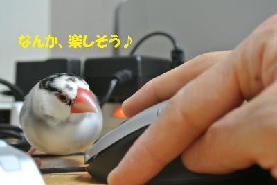 DSC_0944_convert_20140608175258.jpg