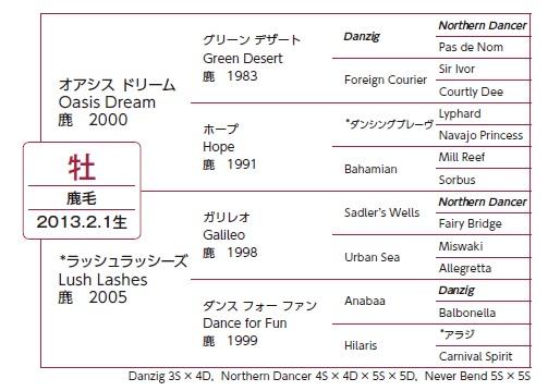 ラッシュ血統表