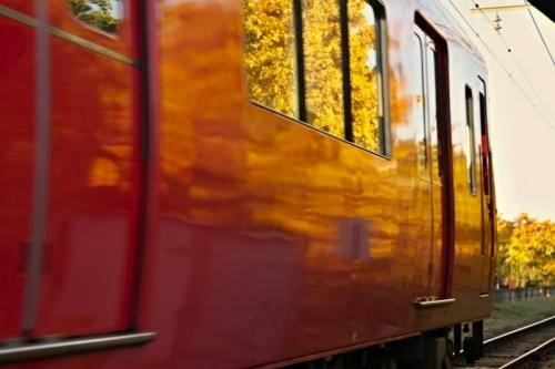 祖父江のイチョウと赤い名鉄電車 その2