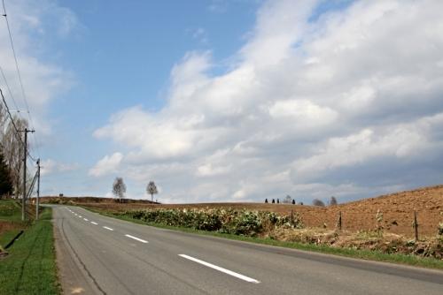 美瑛の丘でサイクリング 2