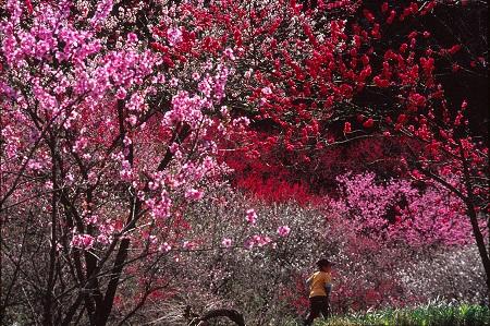 20140514_noririn.jpg