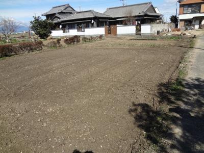 ジャガイモの定植予定地