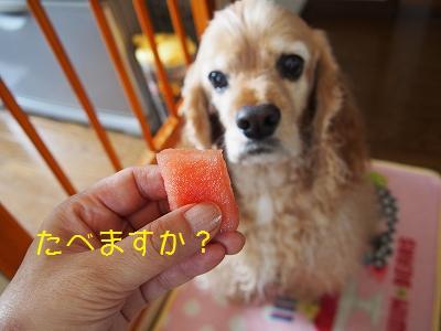 s-食べる?