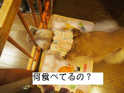 s-お食事?