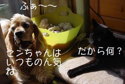 s-new4.jpg
