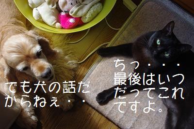 s-new6.jpg