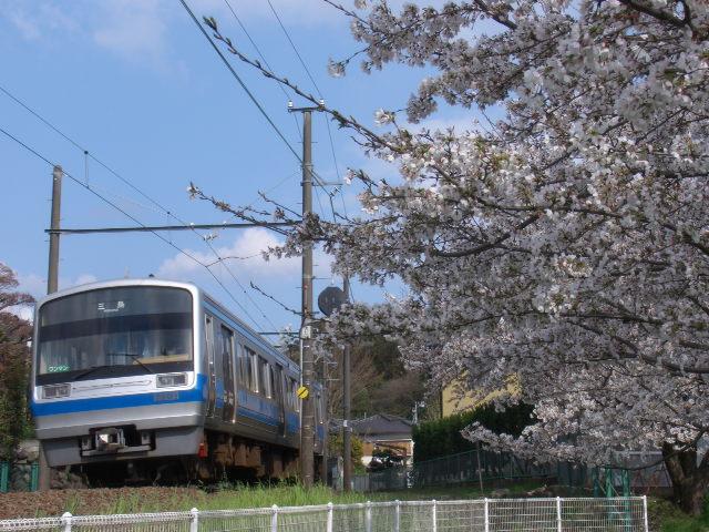 伊豆箱根鉄道7000系1