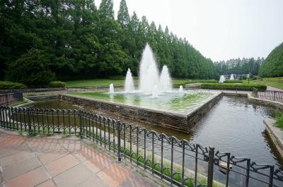 相模原公園噴水20140604