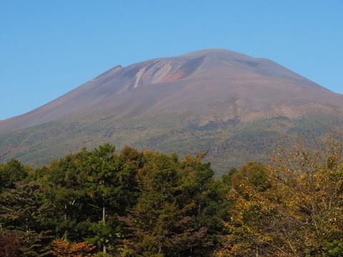 浅間山アカゲラ休憩所141018