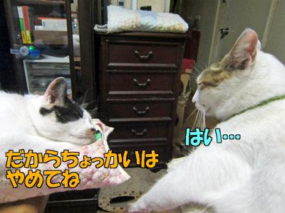 140909-06.jpg