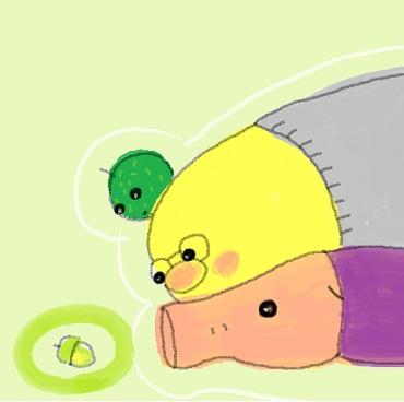 黄緑どんぐり