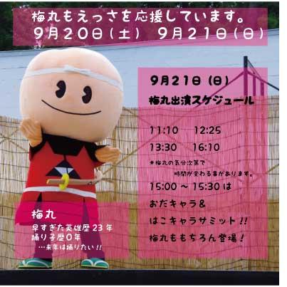 FB梅丸new