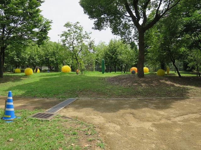 長居植物園 (4)