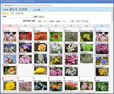 2ndflower.jpg