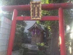 photo 1 (1)