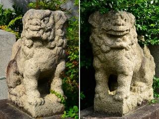徳王稲荷社金刀比羅社の狛犬