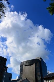雲と岡崎信用金庫