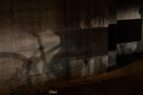 夜の写真-6