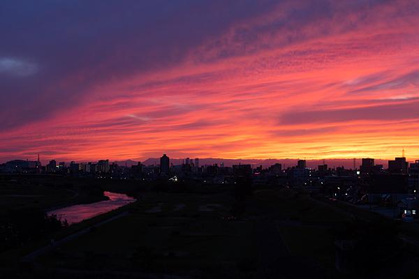 夕方写真-12