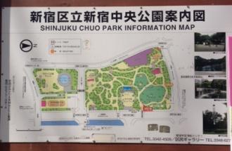 新宿中央公園案内