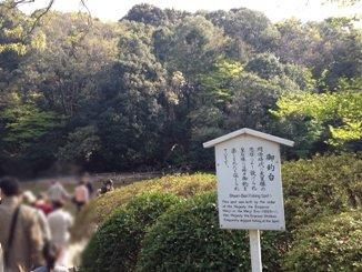 昭憲皇太后の釣り場