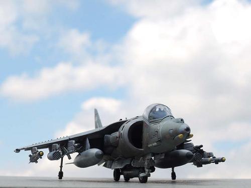 Harrier_00.jpg