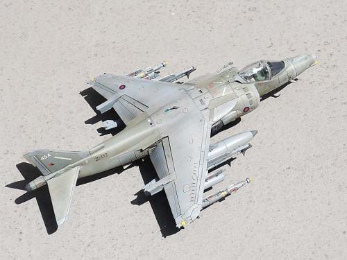 Harrier_02.jpg
