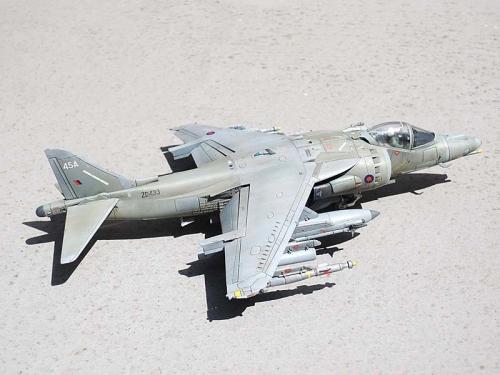 Harrier_03.jpg