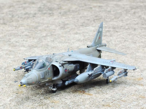 Harrier_04.jpg