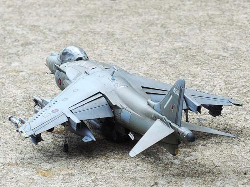 Harrier_05.jpg