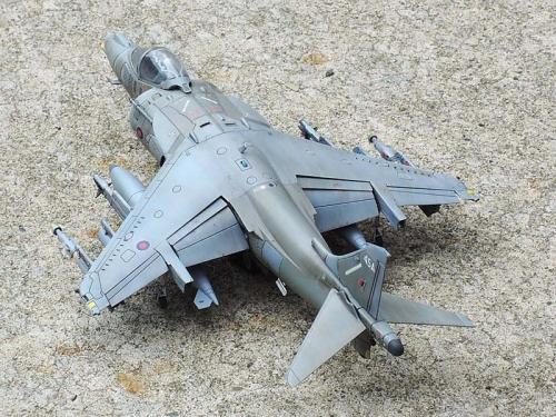 Harrier_08.jpg