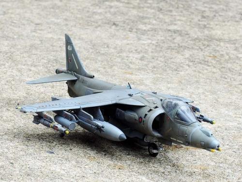 Harrier_09.jpg