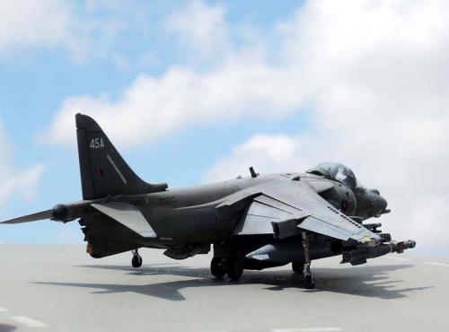Harrier_10.jpg