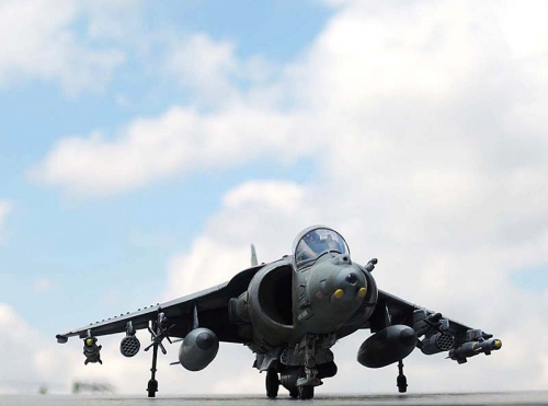 Harrier_11.jpg
