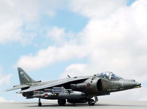 Harrier_12.jpg