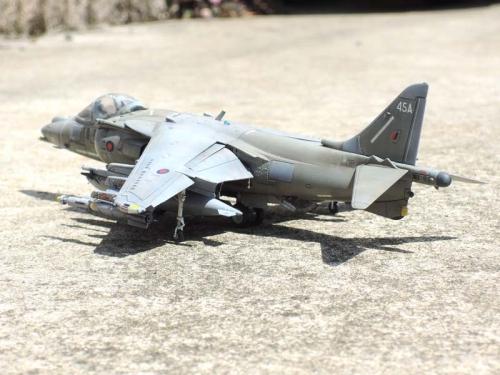 Harrier_13.jpg