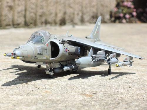 Harrier_14.jpg