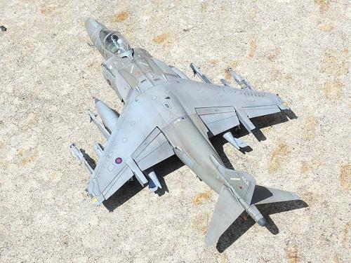 Harrier_16.jpg