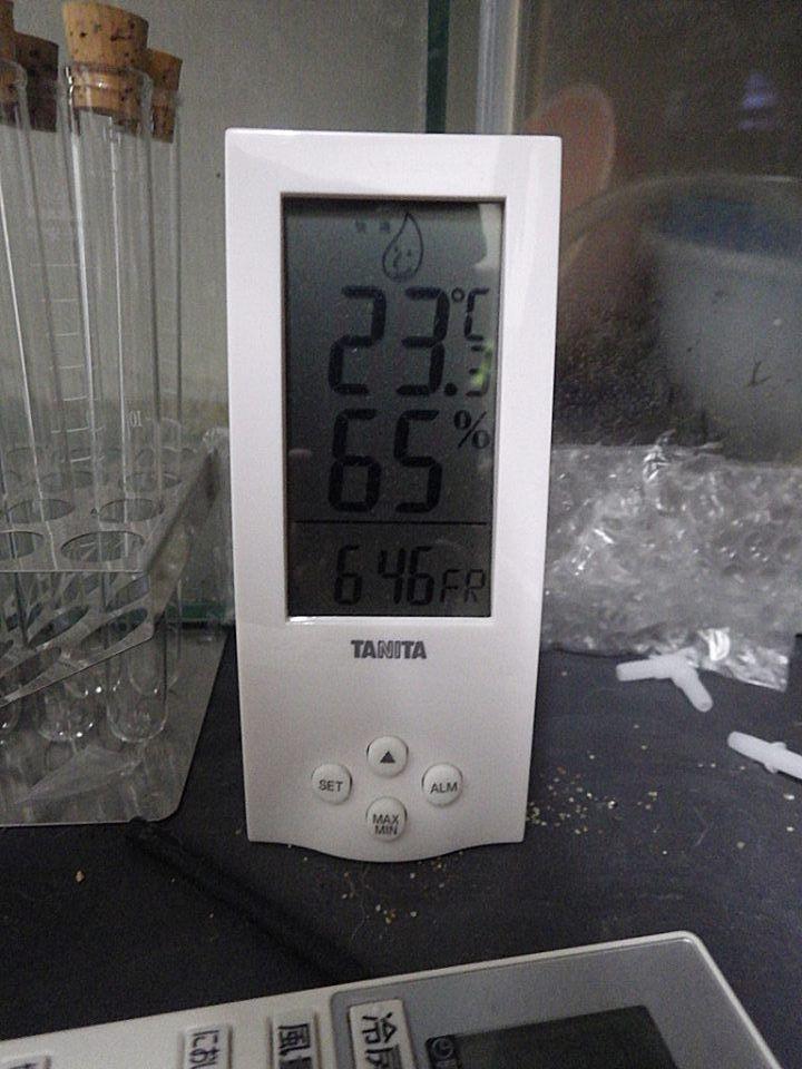 6092001.jpg