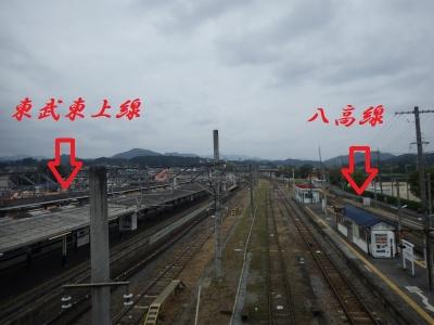 遅が若草 (1)