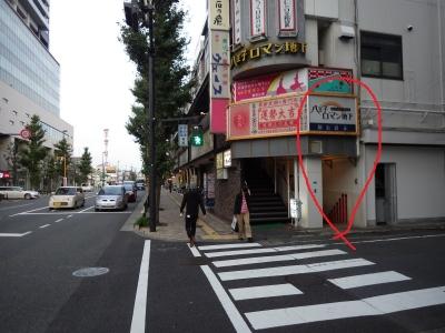 遅が若草 (9)