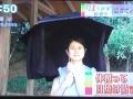 まちかど情報室 日傘 カーテン