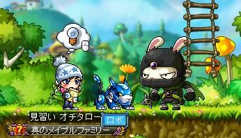 VS怪しいウサギ
