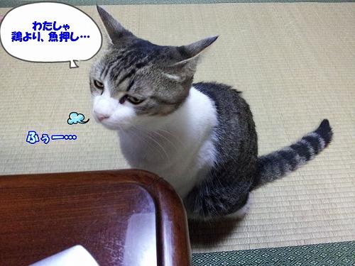20120820_215708.jpg
