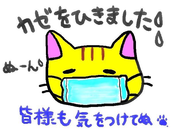 風邪ぬこ(原本)